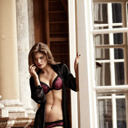 New Yorker Lingerie Autumn winter 2012 - 36013