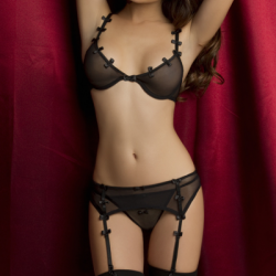 O Sexy lingerie automne hiver 2012 - 36097